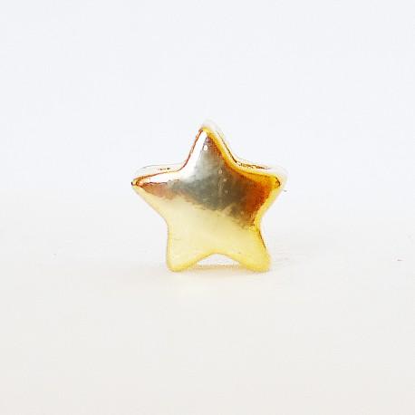 Karoliukas žvaigždutė